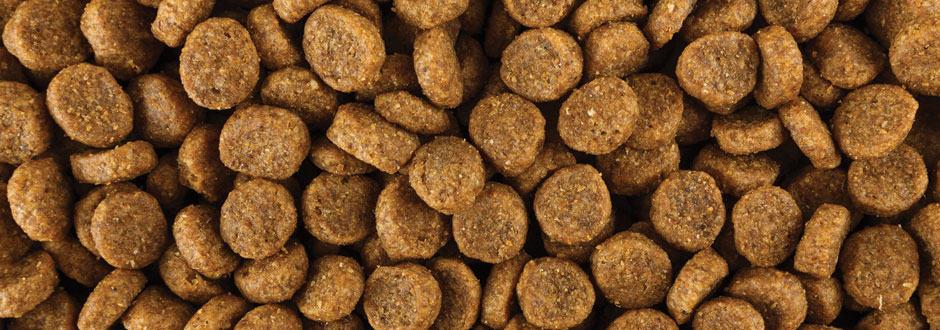 Cablevey Pet Food Conveyor