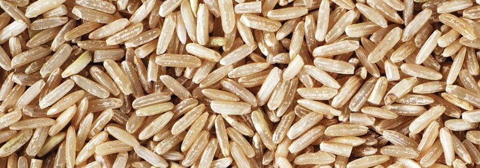 Cablevey نظام ناقل الأرز