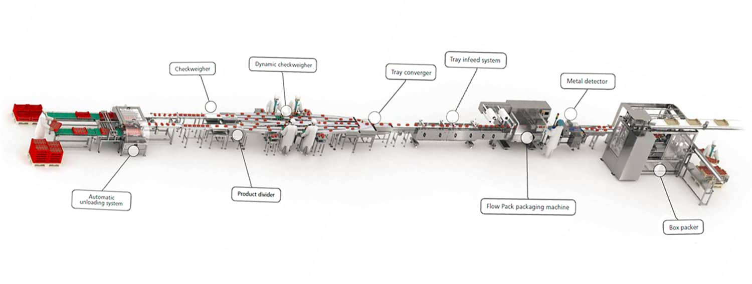 packaging,complete lines,packaging machinery,automatic machinery