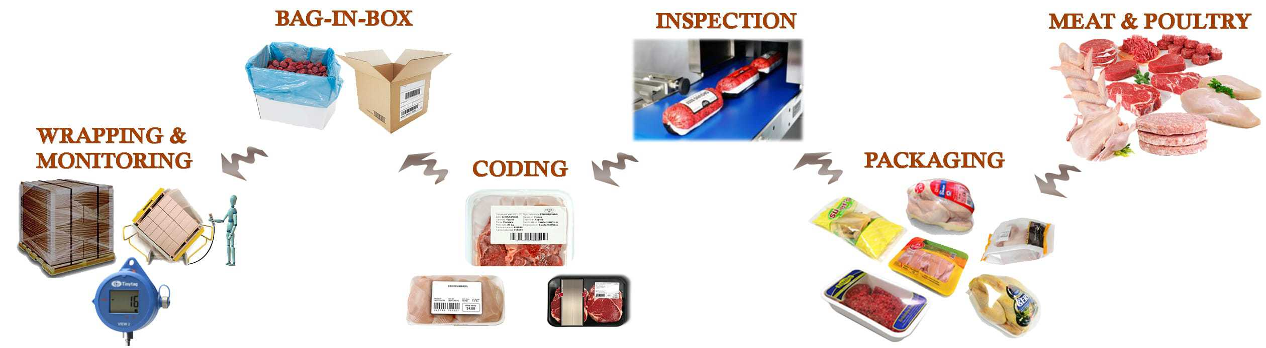 packaging, case erector, meat, poultry packaging machine, coding printer, wrapping machine