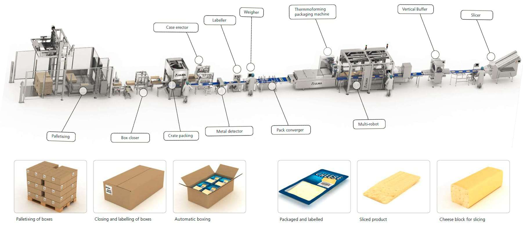 dairy packing, cheese packaging, sealing, wrapping, packaging