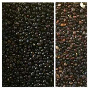 beans sorting, black beans sorting, IST sorter, color sorting
