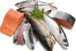 fish industry, ULMA Inoxtruck, material handling equipment, load handling, Al Thika packaging