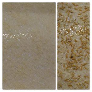 Italian sorting, IST sorting, long rice sorting, basmati rice sorting, IST sorter, Italian sorter